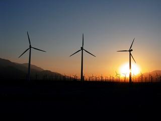 windmills-1576113 (Kopiowanie)